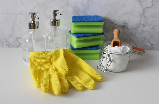 MollyMaid Cleaning Services